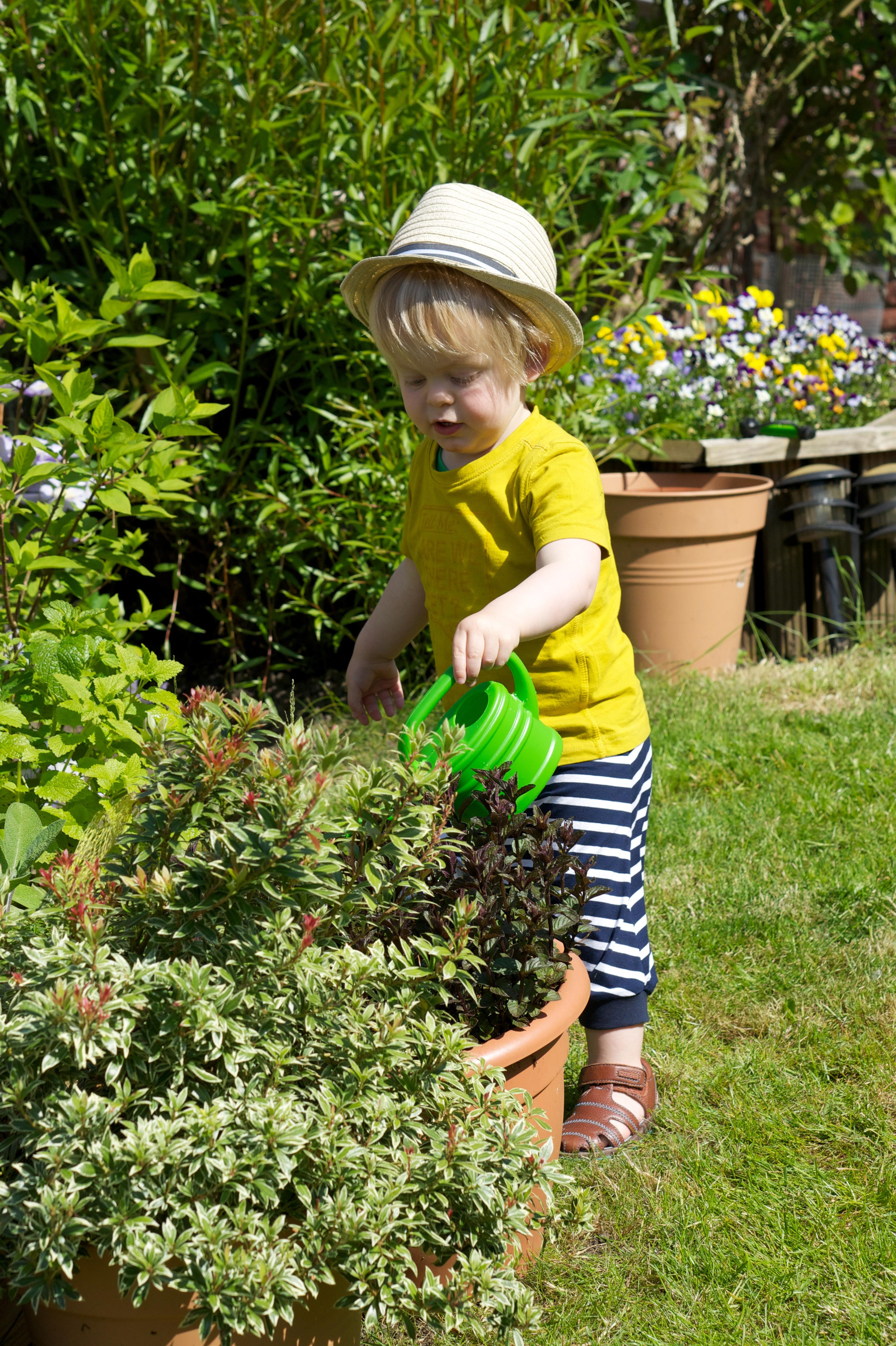 Kids p tits gars en nord les petits papiers - Petit nain de jardin toulouse ...