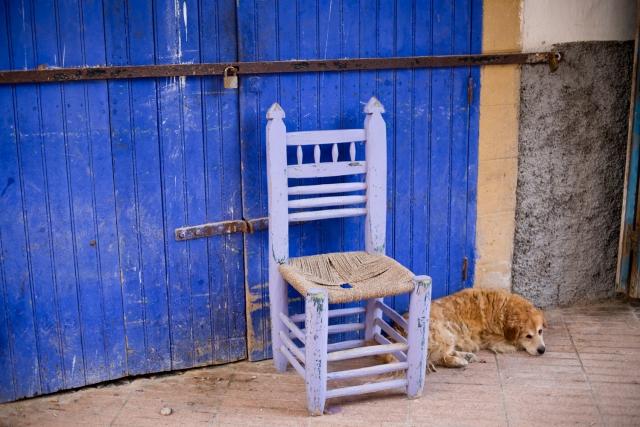Essaouira - porte bleue, chaise, chien